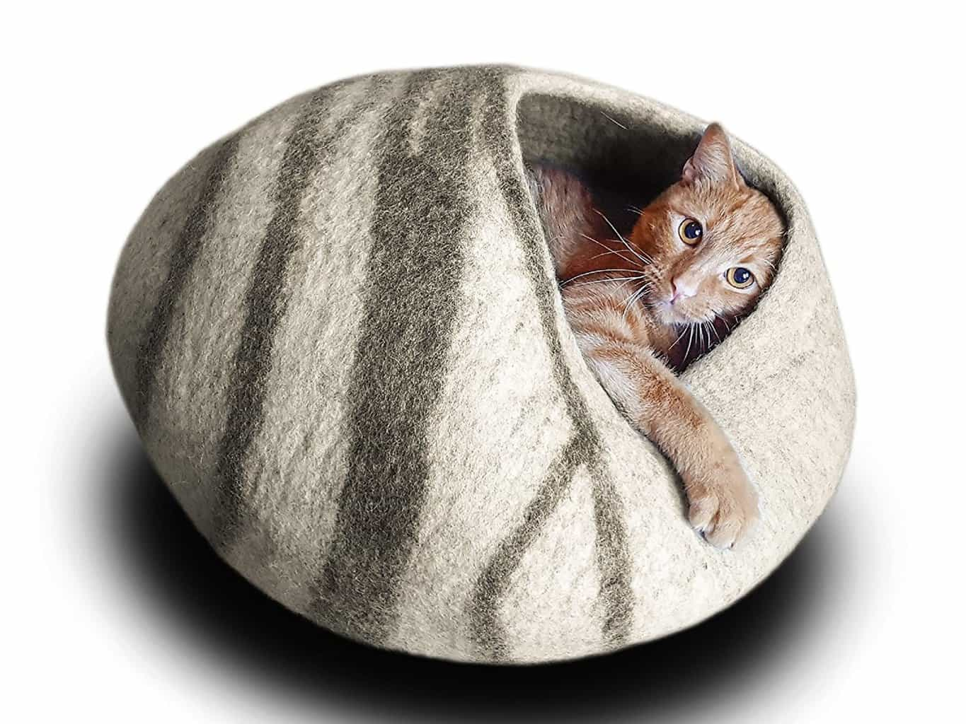if you love your dog or cat, then check out these #budget-friendly #gift ideas for dogs on Christmas, help you save money and the same time keep the furry friend happy too. pet cat litter box,|#giftideasfordogandcatlovers |pet dog accessories pet activites| #petfunny | Gift ideas for dogs and cats