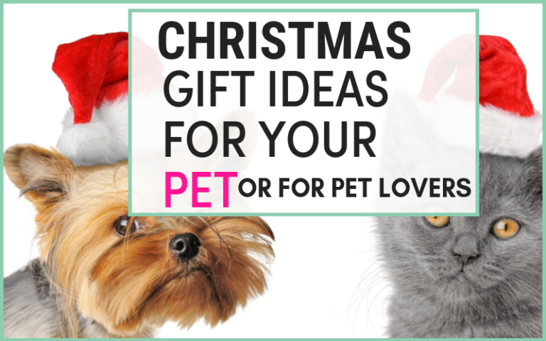 10 unique pet gift ideas that Your Beloved pet Will Thank You For